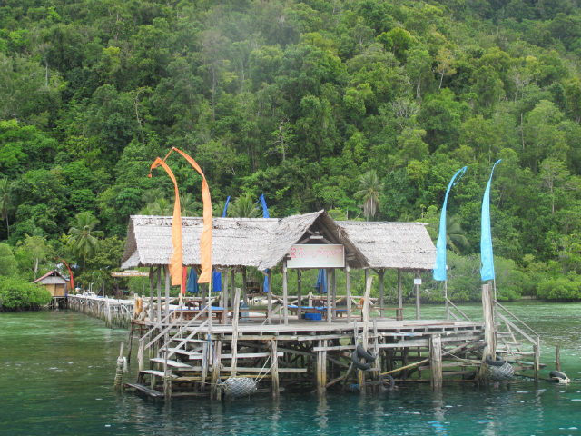 diving trip in raja ampat