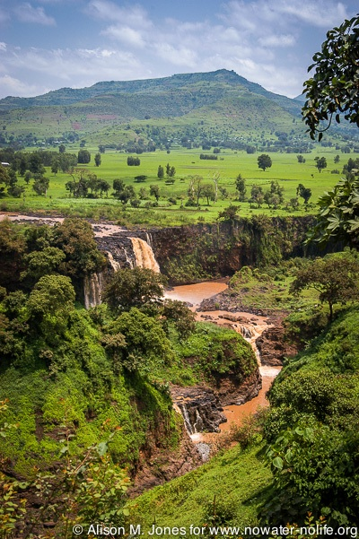 Ethiopia: Bahir Dar, Tissiat Falls, the source of the Blue Nile