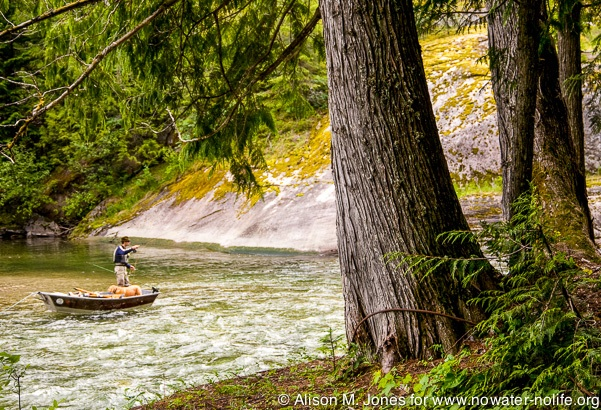 Canada: British Columbia, near Nelson, Salmo River