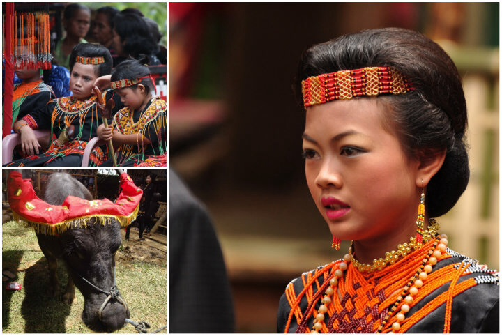 The lavish funerals in Tana Toraja have now become a tourist attraction.