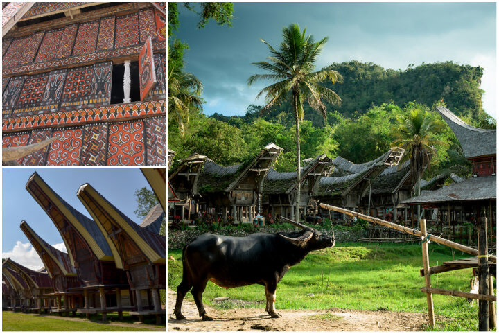 Views of tana Toraja